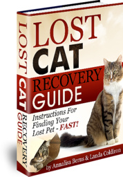 Lost Cat Recovery